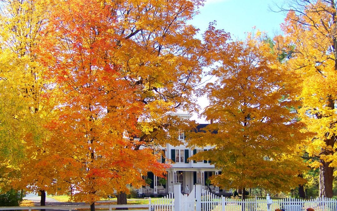 fall preparation steps for your home