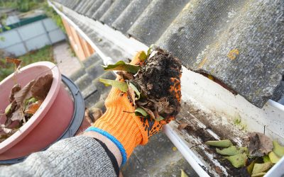 Gutter Cleaning for Your Home